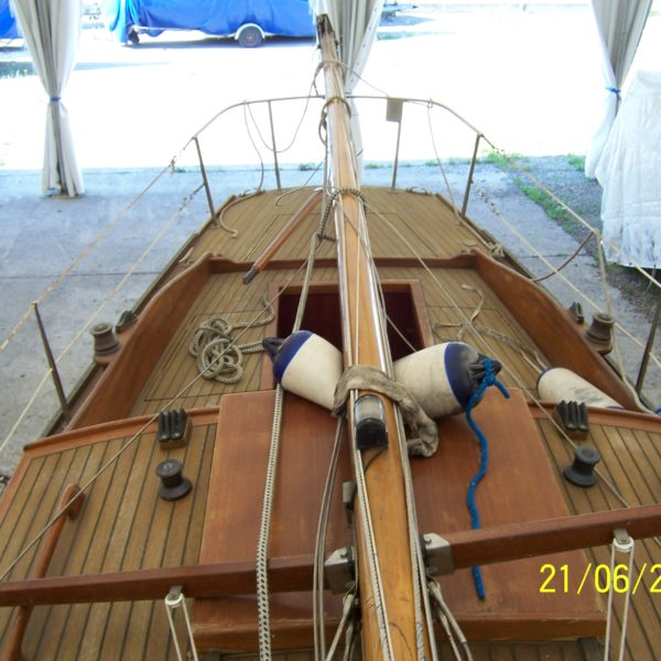 Skipper (3)